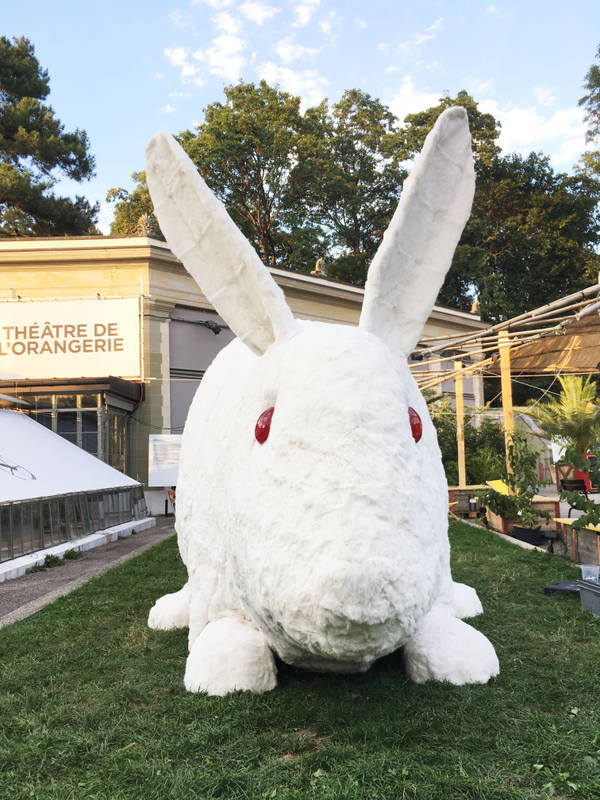 LE GRAND LAPIN BLANC AU TO